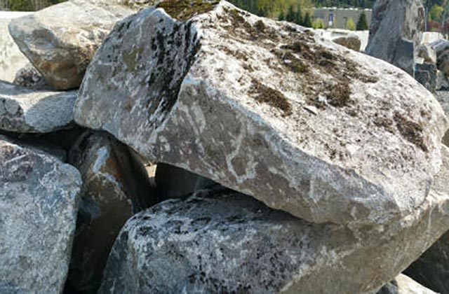 High Cascade Moss Granite