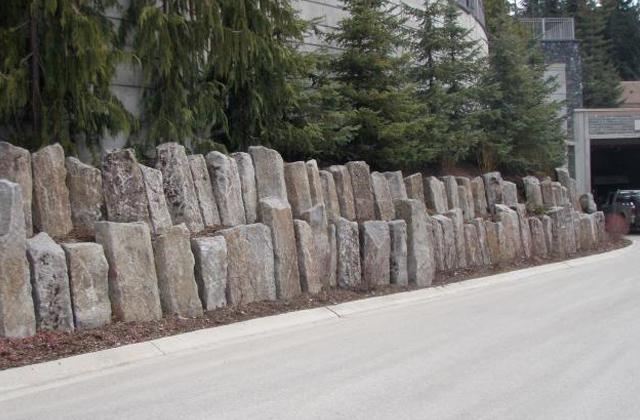 Huckleberry Basalt Canadian